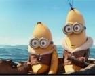 Minions : une troisième bande-annonce à se tordre de rire !