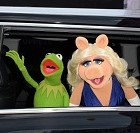 Les Muppets, Kermit et Peggy se sont quittés