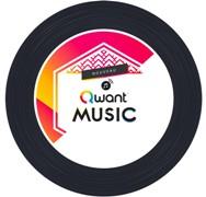 qwant_vinyl