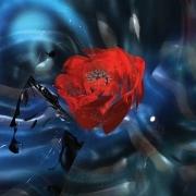 Of Monsters & Men fait son entrée dans le classement du Hype Machine