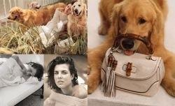 Charlotte Casiraghi : égérie de la campagne Forever Now pour Gucci
