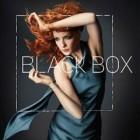 Black Box : la série attendue sur ABC