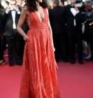 Festival de Cannes 2015 : que de belles tenues et du beau monde