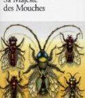 Le film « Sa Majesté des mouches » fera l'objet d'une adaptation