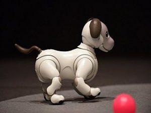 Aibo, le chien robot : Sony propose une version amelioree de l appareil
