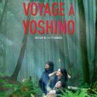 Film dramatique « Voyage à Yoshino » : un hymne à la nature