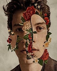 Shawn Mendes : le chanteur pop canadien fera une tournee mondiale