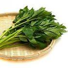 L'ashitaba, une plante japonaise réputée pour ses vertus médicinales