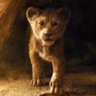 Films d'animation 2019 : le top 5 des films à voir au cinéma !