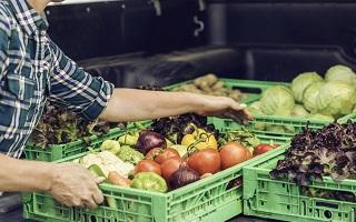 Sante et alimentation bio, realite entre marketing, environnement et achat ethique