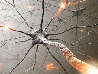 Memoire a court terme, le sommeil, l humeur et l age dans une etude realisee par des psychologues