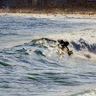 Le Surf aux Jeux Olympiques pourrait se dérouler à Tahiti
