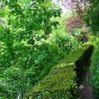 Jardin à Paris : découvrez de nouveaux lieux de rencontres