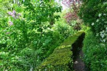 Jardin a Paris, la capitale francaise accueille de nouveaux lieux de rencontres et jardins