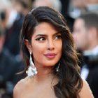 « Tigre Blanc » aura Priyanka Chopra Jonas au casting
