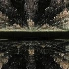 L'artiste Yayoi Kusama honorée à Londres
