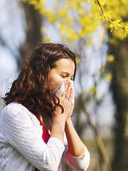 Covid 19 : allergie au pollen, asthme et essoufflement a surveiller