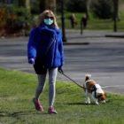 Animaux: les adoptions de chiens en hausse au Royaume-Uni