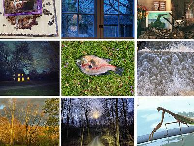 Annie Leibovitz, la photographe propose ses oeuvres a une exposition virtuelle