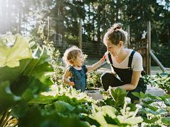 Achat de maison post confinement, le bien immobilier avec jardin prise