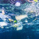 Pollution plastique : attention aux idées reçues