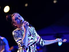 Rock en Seine, Festival des Festivals sur France Televisions avec divers artistes
