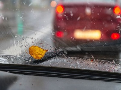 une feuille sur un pare-brise durant un temps pluvieux