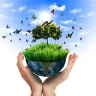Des gestes écologiques pour la protection de l'environnement