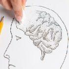 Les remèdes contre la maladie d'Alzheimer