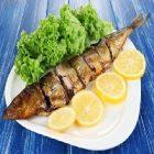 Le poisson et ses vertus nutritionnelles sur le métabolisme