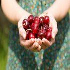 Quelles sont les vertus de la cerise pour la santé et le corps ?