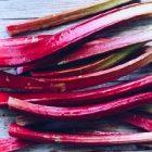 Les atouts de la rhubarbe sur la santé et le corps