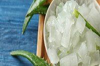 L'aloe vera : un allié pour la peau et les cheveux