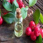 Les bienfaits de l'huile de gaulthérie