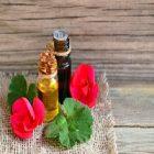Les vertus de l'huile de géranium pour la santé et le corps