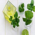 L'huile de menthe et ses nombreux bienfaits