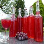 Jus de raisin : une boisson bénéfique au corps