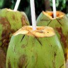 L'eau de coco et ses vertus beauté
